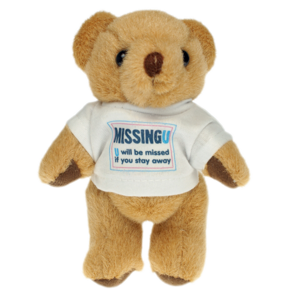 Honey Bear 13cm T-Shirt