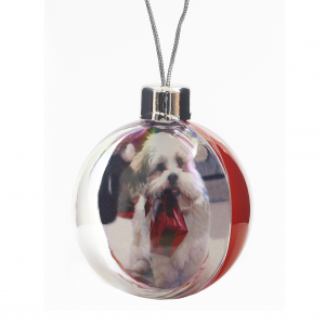Promotrendz product Picto Bauble in Card Box - Large