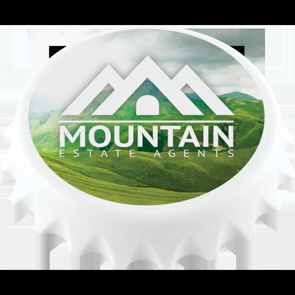 Fridge Magnet Bottle Cap